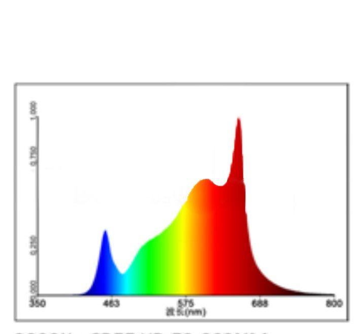 3000k Quantam Spectrum